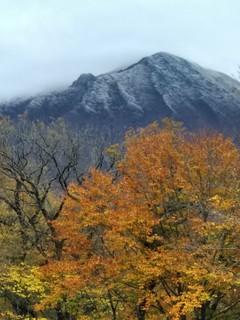 鳥取大山あたりの紅葉は見頃、温泉と水木しげるロードで山陰を満喫!_191123_0001.jpg